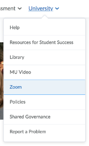 a screenshot of the University menu in D2L with the Zoom menu item highlighted